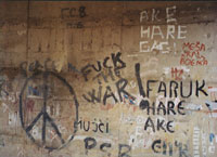 Graffiti on wal in Sarajevo, peace symbol, anti-war epithet, photo by author